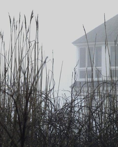 House in the Fog