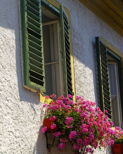 Window Box, Durnstein, Austria